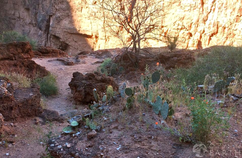 havasupai canyon
