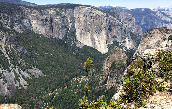 crocker-point-view-yosemite