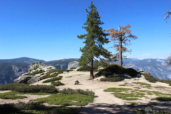 dewey-point-hike-yosemite