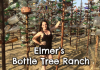 elmers-bottle-tree-ranch