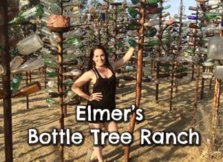 elmers-bottle-tree-ranch