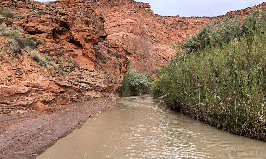 paria canyon trail