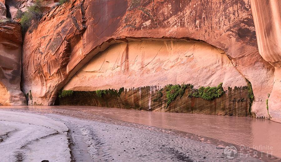 paria-canyon-spring