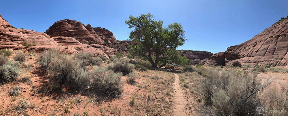 paria canyon trail
