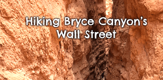 bryce-canyon-wall-street