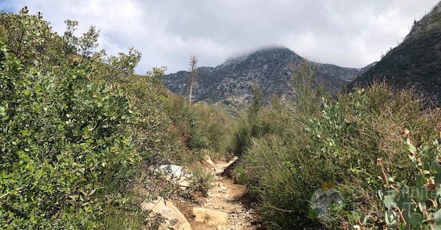 colby-canyon-hike