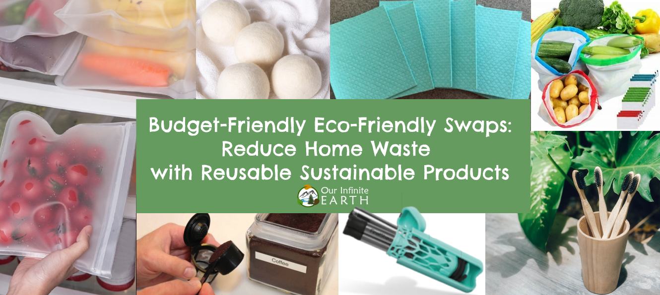 eco friendly home swaps