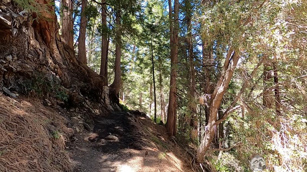 burkhart-trail-cooper-canyon-hike-1