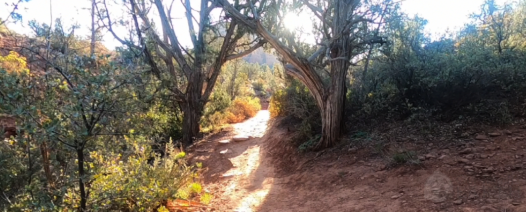 mescal-trail-2
