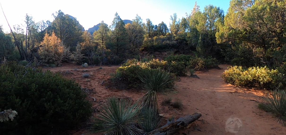 mescal-trail