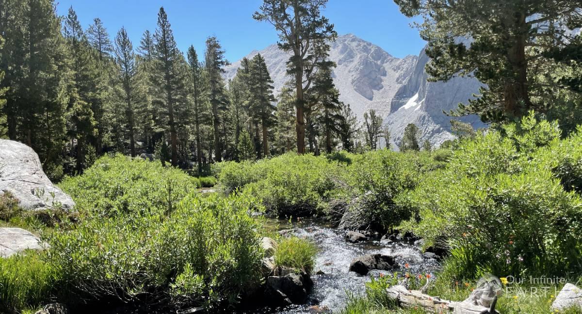 Meadow-trail