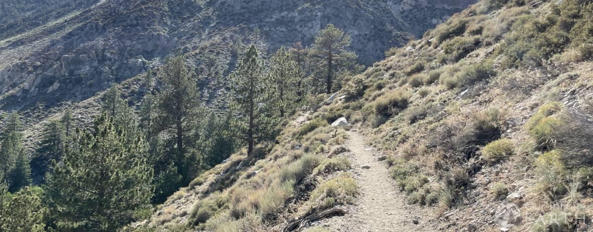 big-pine-upper-trail