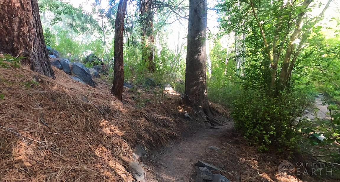 start-big-pine-trail